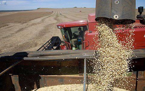 Se cerró el círculo solidario en Rojas: Los productores donan soja y una cerealera se hace cargo del flete